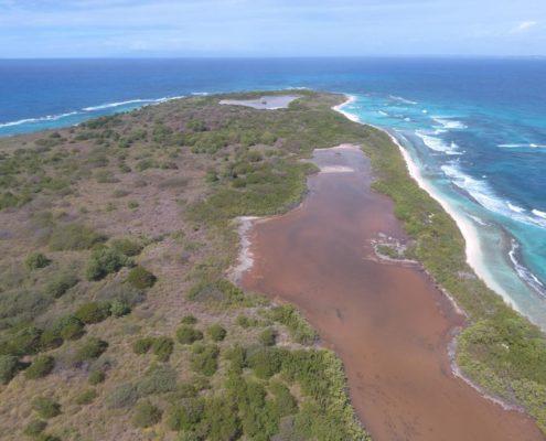 Saline - réserve naturelle de Petite Terre